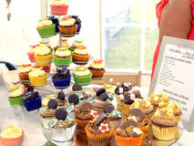 Cup Cakes. Royalty Free Stock Images