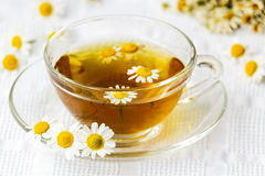 Cup of camomile tea with flowers Royalty Free Stock Images