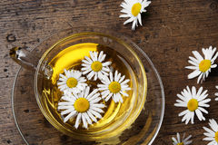 A cup of camomile tea Royalty Free Stock Images