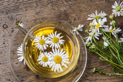Cup of camomile tea Stock Photos
