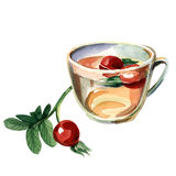 Cup with a cankerberry Royalty Free Stock Images