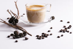 A cup of cappuccino Royalty Free Stock Photography