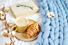 Cup with cappuccino, croissant, blue pastel giant plaid. Bedroom, morning concept, cotton flower, book with glasses stock image