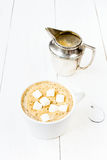 Cup of cappuccino with foam, marshmallow, cinnamon and milk mug Stock Image