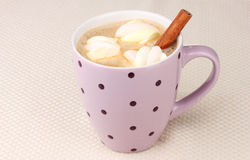 Cup of cappucino with marshmallows. And cinnamon on beige background stock image