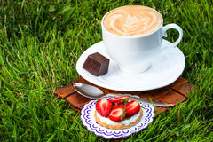 Cup of cappucino and sweet dessert. On grass background stock photos