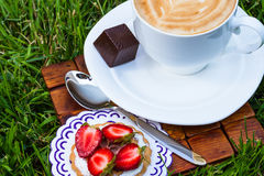 Cup of cappucino and sweet dessert. On grass background stock photo