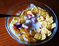 Cup of cereals, yogurt and strawberries stock photos