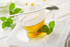 Cup of chamomile Stock Images