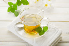 Cup of chamomile Stock Photography