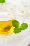 Cup of chamomile Royalty Free Stock Images