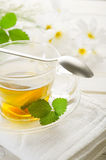 Cup of chamomile Royalty Free Stock Image