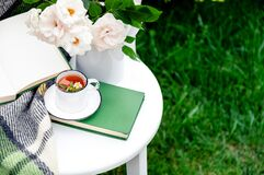 Cup of chamomile herbal tea with chamomile flower mint and teapot with flowers roses, books, warm plaid on white table outdoor.