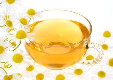 Cup of chamomile tea Royalty Free Stock Photos