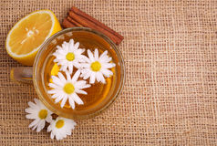 Cup of chamomile tea with chamomile flowers Stock Photography