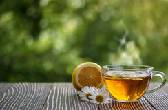 Cup of chamomile tea with chamomile flowers. And lemon stock images