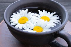 Cup of chamomile tea and chamomile flowers on wooden background. Close-up royalty free stock images