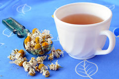 Cup of chamomile tea and dried flowers Stock Image