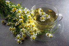 Cup of chamomile tea with flowers Stock Photo