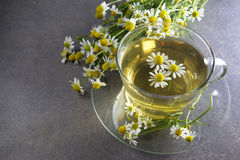 Cup of chamomile tea with flowers Royalty Free Stock Photography