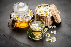 Cup of chamomile tea. Chamomile tea in a glass cup Stock Images