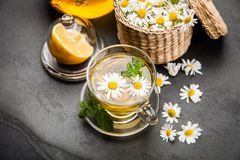Cup of chamomile tea. Chamomile tea in a glass cup Stock Photography