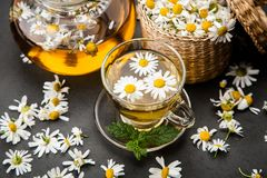 Cup of chamomile tea. Chamomile tea in a glass cup Royalty Free Stock Photo