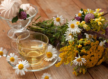 A cup of chamomile tea in a glass cup, bowl of marshmallows and a bouquet of field summer flowers on a wooden surface Royalty Free Stock Photo