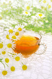 Cup of chamomile tea over white Stock Photography
