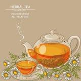Chamomile tea illustration Stock Images