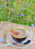 Cup of chicory hot drink Royalty Free Stock Photo