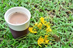A cup of chocolate and flower. The hot chocolate is good in the winter season royalty free stock photography