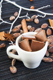 Cup with chocolate slices and spices around Stock Photography