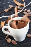 Cup with chocolate slices and spices around Stock Images