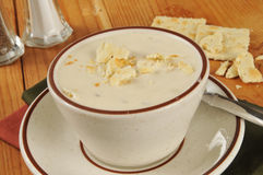 Cup of clam chowder Stock Photos