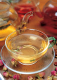 A cup of clear tea Royalty Free Stock Photos