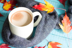 Cup of cocoa with autumn leaves abstract still life Stock Image