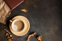 Cocoa and autumn leaves royalty free stock photography