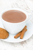 Cup of cocoa with cinnamon and oatmeal cookies close-up Stock Photography