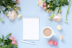 Cup of cocoa, macaroons cookies colorful in pastel colors , delicate pink ranunculus flowers and notebook on a pale blue backgroun stock photography