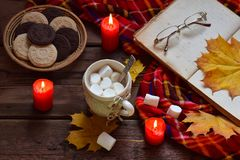 Cup of cocoa with marshmallow, chocolate cookie and peanut biscuit, book, blanket. Autumn relaxation, country lifestyle, seasonal Royalty Free Stock Images