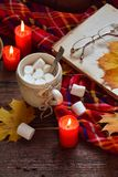 Cup of cocoa with marshmallow, chocolate cookie and peanut biscuit, book, blanket. Autumn relaxation, country lifestyle, seasonal Stock Photos