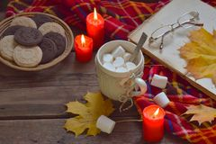 Cup of cocoa with marshmallow, chocolate cookie and peanut biscuit, book, blanket. Autumn relaxation, country lifestyle, seasonal Stock Photo