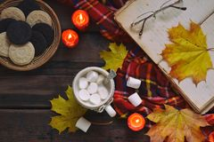 Cup of cocoa with marshmallow, chocolate cookie and peanut biscuit, book, blanket. Autumn relaxation, country lifestyle, seasonal Stock Images
