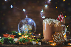 Cup of Cocoa with marshmallow and gingerbread cookie Royalty Free Stock Photo