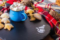 Cup of cocoa with marshmallow and home cookies. Christmas and new year holiday concept Stock Image