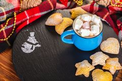 Cup of cocoa with marshmallow and home cookies. Christmas and new year holiday concept Royalty Free Stock Photo