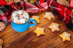 Cup of cocoa with marshmallow and home cookies. Christmas and new year holiday concept Stock Photos