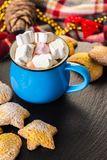 Cup of cocoa with marshmallow and home cookies. Christmas and new year holiday concept Stock Photo