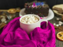 Cup with cocoa and marshmallow Stock Photos